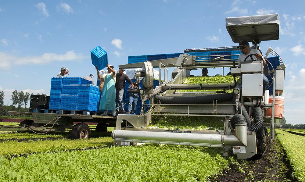 farm harvesting