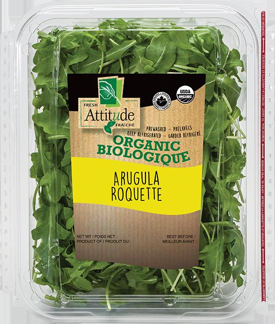 Organic Arugula